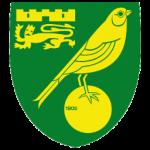 Prediksi Bola Norwich City