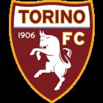Prediksi Bola Torino